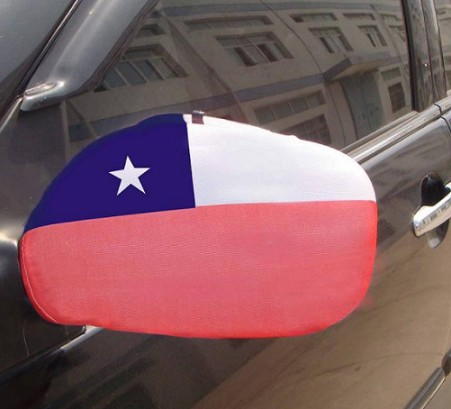 Fast delivery personalize polyester car mirror cover flag